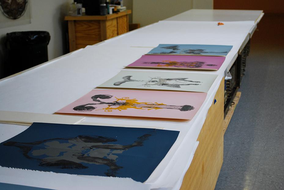 Trabalhos do artista José Rufino