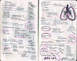 Cuaderno Ignacia